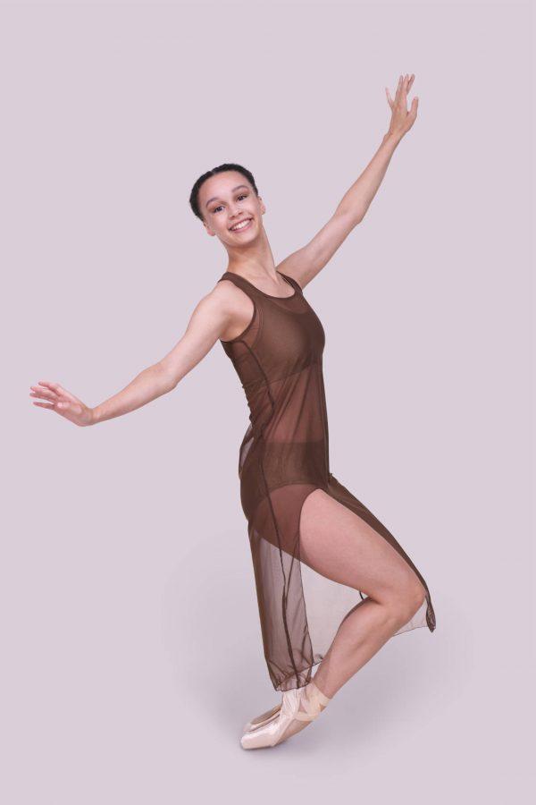 Tonya Brown Dress